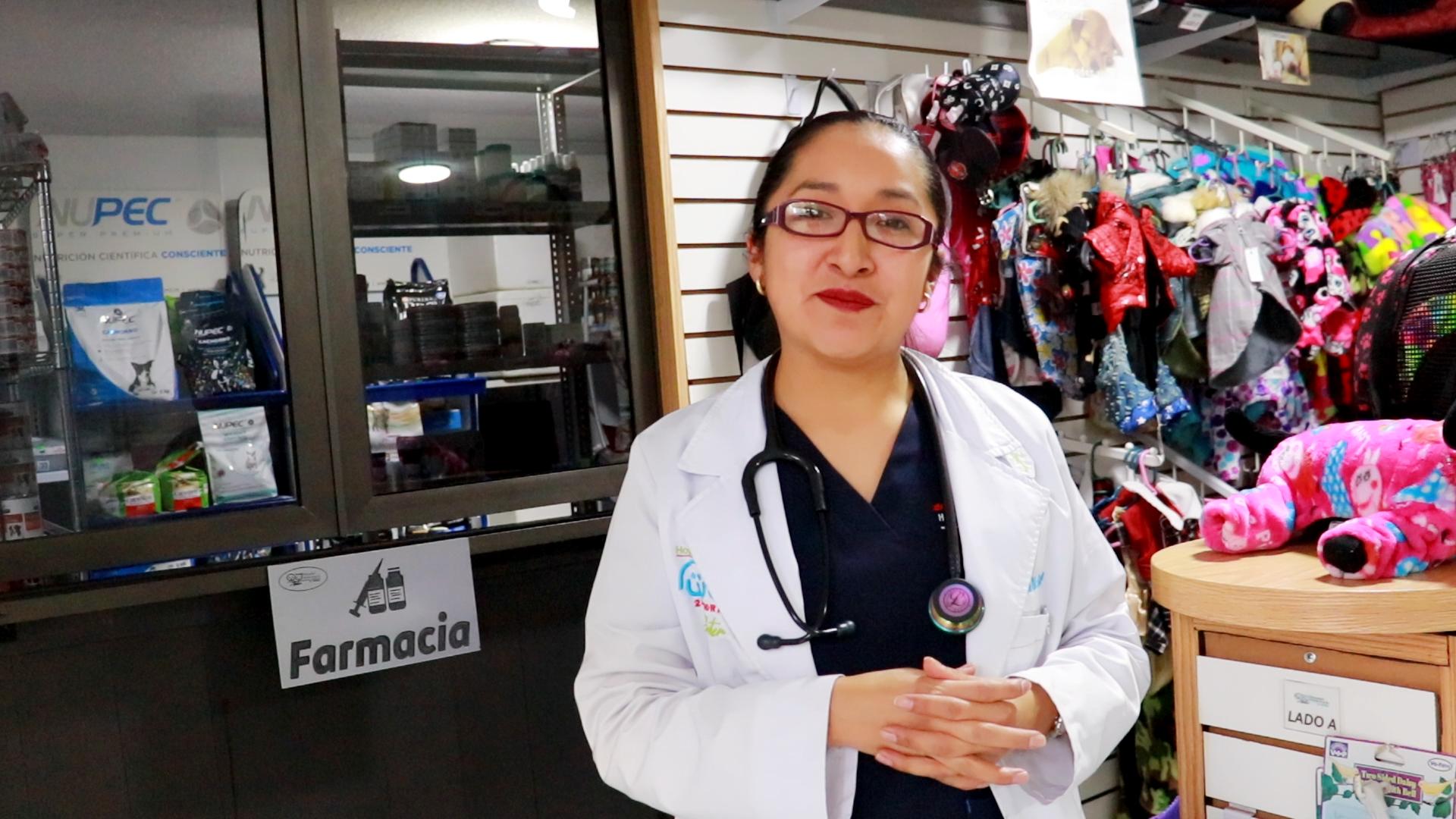 Medicamentos para mascotas - Farmacia